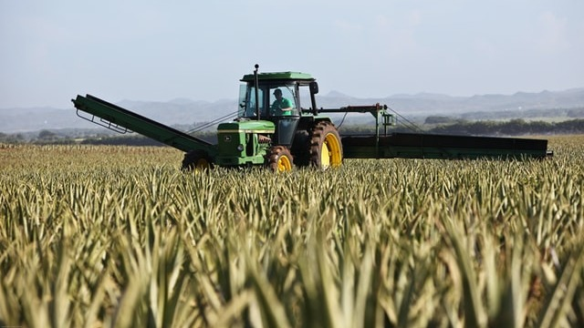 Farming replaces fossil fuels as biggest human wellspring of sulfur to nature